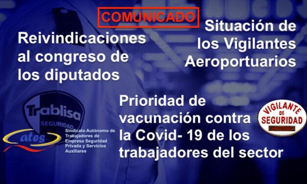 Reivindicaciones al congreso de los diputados por la situación de los Vigilantes de Seguridad