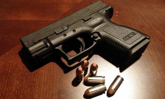 Prórroga de las licencias y habilitaciones en materia de armas